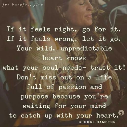 if it feels right quote